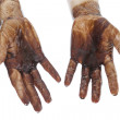 Oil in dirty hands isolated — Stock Photo #13260592