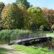 Old footbridge across pond in the autumn park — Photo