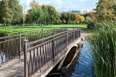 Bridge across river in city park in autumn season — Stock Photo