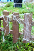 Planks of wood fence with lot of web. Green grass around — Stock Photo