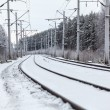 Empty electric railway line in winter forest — Stock Photo