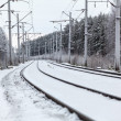 Empty electric railway line in winter forest — Stock Photo #21257417