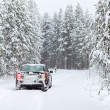 Black land vehicle standing on a country road in wintry northern forest — Stock Photo