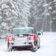 Black car standing on a country road in wintry northern forest — Stock Photo