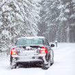 Black car standing on a country road in wintry northern forest — Stock Photo #21257545