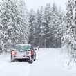 Land vehicle driving on a country road in wintry northern forest — Stock Photo