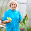 Happy senior Caucasian woman with onion and lettuce standing against greenhouse — Stock Photo