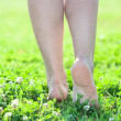 Female beautiful legs — Stock Photo
