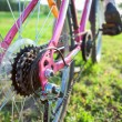 Bicycle sprocket — Stock Photo