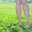 Stock Photo: Women legs
