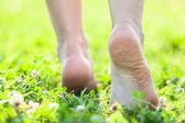 Bare feet — Stock Photo