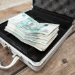 Stock Photo: Russicash money in order inside of steel case