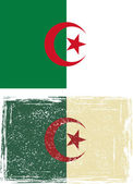Algerian grunge flag. Vector — Vetorial Stock