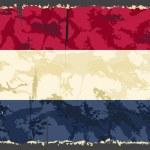Holland, Netherlands grunge flag. Vector — Stock Vector #49560539