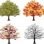 Different seasons of art tree. Vector — Stock Vector #50236901