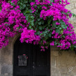 Bougainvillea arch, Rhodes Greece. — Stock Photo