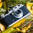 Retro photo camera — Stock Photo