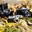 Retro photo cameras — Stock Photo
