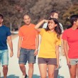 Group of Friends Walking Outside — Stock Photo #12453215