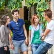 Group of Teenagers Outside — Stock Photo #12630274