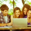 Stock Photo: Group of Teenage Students at Park with Computer and Books