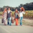 Hippie Group Walking on a Countryside Road — Stock Photo #12841868