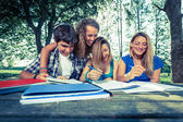 Group of Teenage Students at Park — Foto Stock