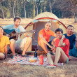 Group of Camping and Singing — Stock Photo
