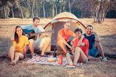Gruppe von camping und singen — Stockfoto