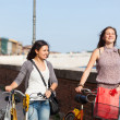 Two Beautiful Women Walking in the City with Bicycles and Bags — Stock Photo #13855250