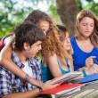 Group of Teenage Students at Park with Computer and Books — Stock Photo #13854391