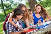 Gruppo di studenti adolescenti del parco con computer e libri — Foto Stock