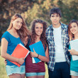 Group of Teenage Students at Park — Stock Photo #14491641
