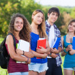 Group of Teenage Students at Park — Stock Photo #14494829