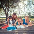 Group of Teenage Students at Park — Stock Photo #14494859