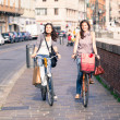 Two Beautiful Women Walking in the City with Bicycles and Bags — Stock Photo #18807551