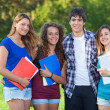 Group of Teenage Students at Park — Stock Photo #18807849