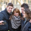 Royalty-Free Stock Photo: Group of Friends taking Self Portraits with Mobile Phone
