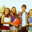 Group of Teenage Students at Park — Stock Photo #21902761