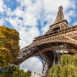 Tour Eiffel in Paris — Stock Photo