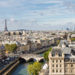 Stock Photo: Paris seen from top of Notre Dame