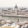 Danube and Parliament Building in Budapest — Stock Photo #23334912