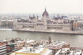 Danubio y edificio del parlamento en budapest — Foto de Stock