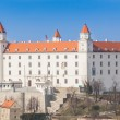 Old Castle in Bratislava on a Sunny Day — Stock Photo