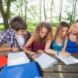 Stock Photo: Group of Teenage Students at Park