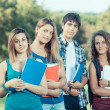 Group of Teenage Students at Park — Stock Photo #23933297