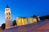 Vilnius Cathedral at Blue Hour — Stock Photo