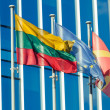 Lithuaniand UE Flags in Vilnius Financial District — Stock Photo #27156421