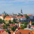 Stock Photo: Tallinn Castle seen from Cathedral Bell Tower