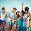 Stock Photo: Group of Friends Having a Party at Beach